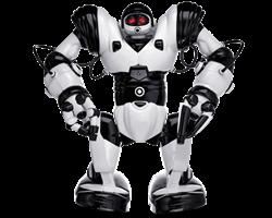 Робот ROBOSAPIEN - фото 4504