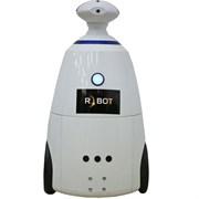 Робот промоутер R.bot