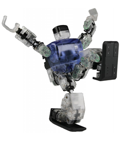 Robobuilder 5720T - фото 4615