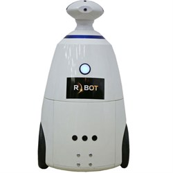 Промоутер R.bot - фото 4782