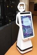Аренда сервисного робота AR-D